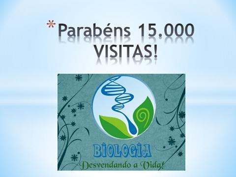 15.000 Visitas